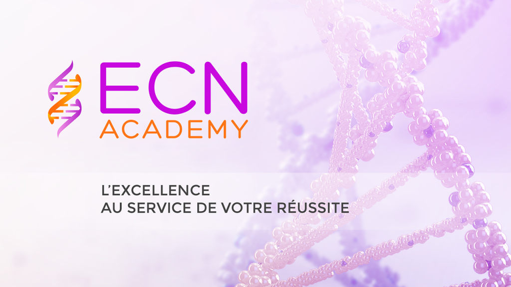 ecn-academy-1024x576